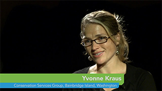 Kraus Video